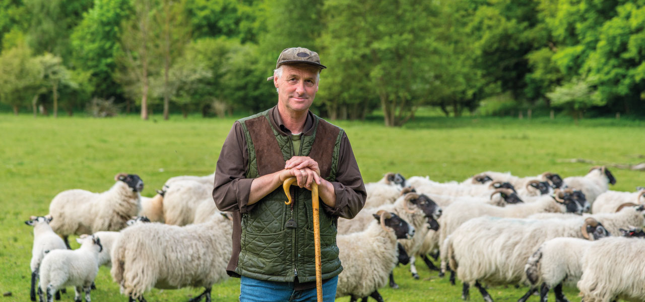 A farmer standing in front of his sheep